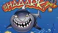 СуперСтавка Ааакулы